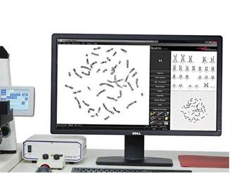 Zeiss MetaSystems 染色體自動掃描分析系統