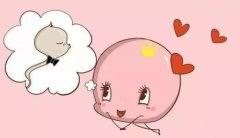 什么影响了深圳试管婴儿的卵子质