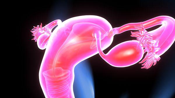 子宫内膜厚试管婴儿会不会不成功