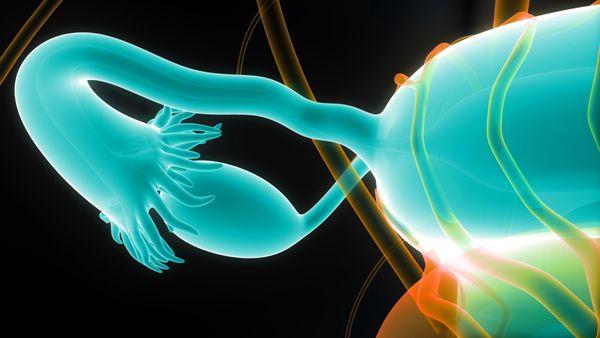 输卵管堵塞试管婴儿做几代