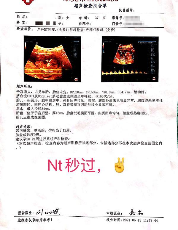 试管中泌怀孕了